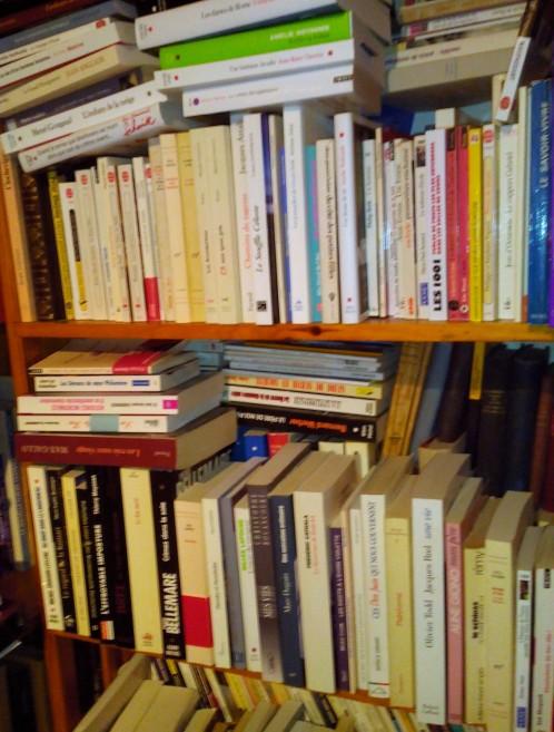 Un morceau de ma bibliothèque.jpg
